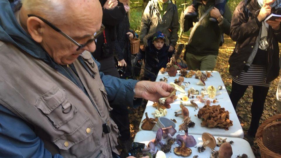 Na sběr hub se zkušeným mykologem vyrazili do Jetřichovic houbařští nadšenci