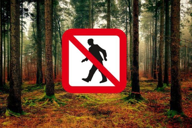 Zákaz vstupu do lesů (ilustrační foto)