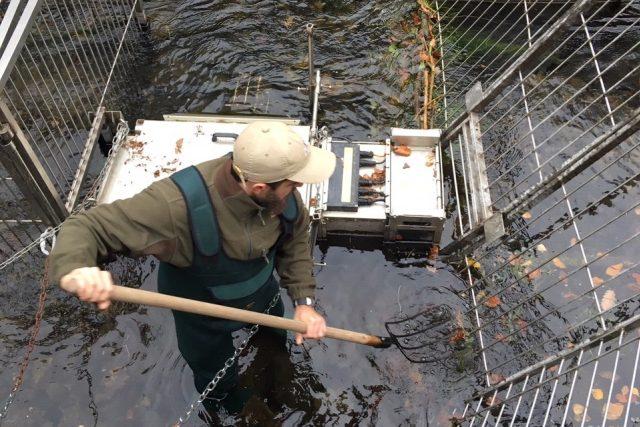 Čištění rybího scanneru v řece Kamenici