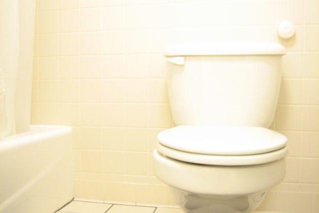 Záchod (ilustr. obr.)