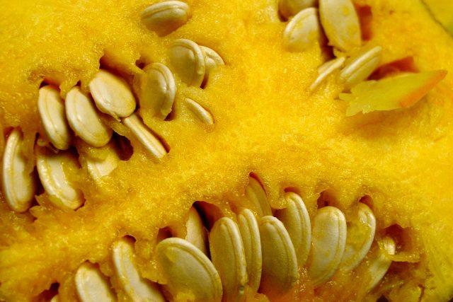 Dýňová semínka  | foto: Fotobanka stock.xchng