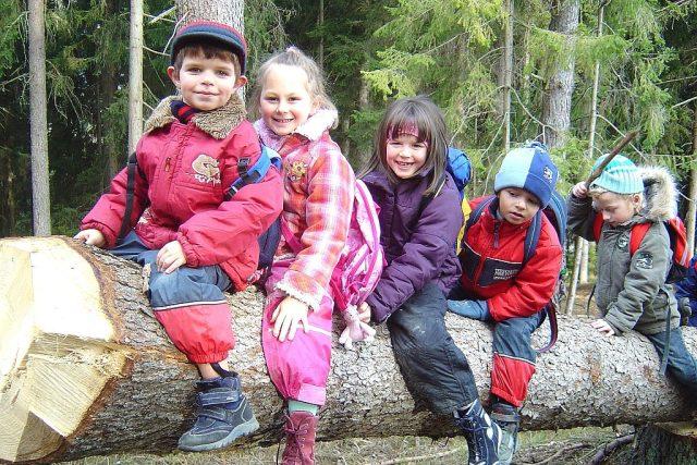Lesní školka (ilustrační foto)
