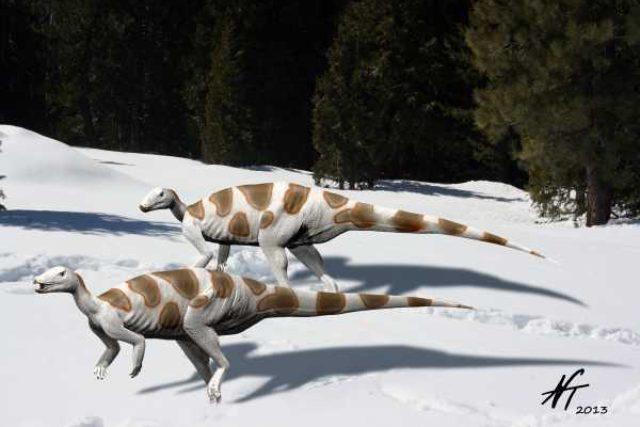 Dinosaurus Trinisaura santamartaensis. Jeho fosilní pozůstatky byly nalezeny na ostrově Jamese Rosse v Antarktidě.