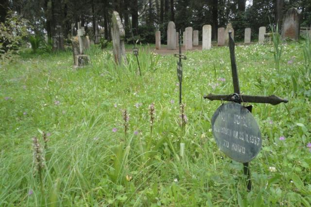 Britský hřbitov na řeckém ostrově Korfu,  kde na jaře kvetou divoké orchideje | foto: Pavla Smetanová
