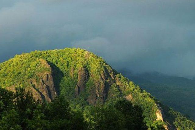 Přírodní rezervace Kozí vrch poblíž obce Povrly v okrese Ústí nad Labem