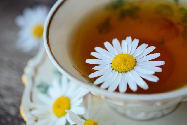 byliny, bylinky, čaj