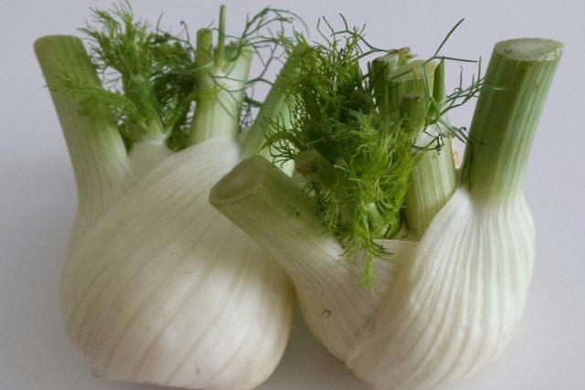 Fenykl, zelenina