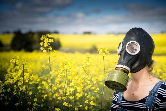 GMO | foto: flickr.com Liam Wilde