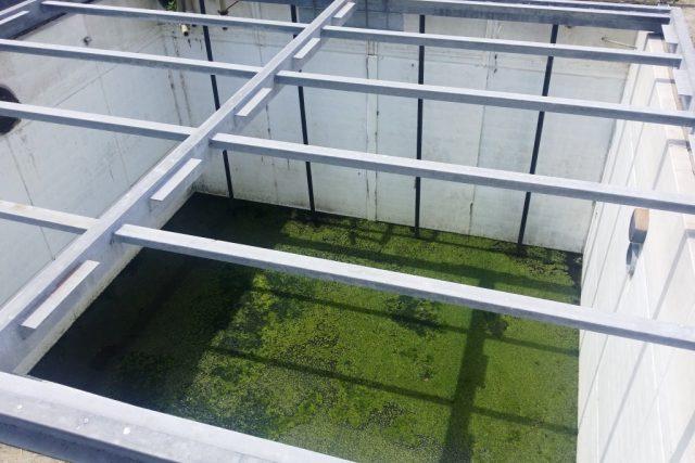 Prackovická čistírna odpadních vod