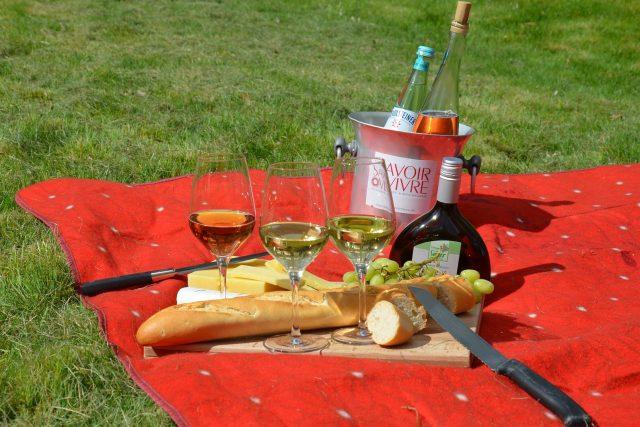 Piknik - ilustrační foto | foto: CC0 Public domain,  Fotobanka Pixabay