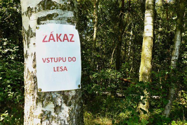 Likvidace kalamity v Oknech na Českolipsku - ZÁKAZ VSTUPU do lesa