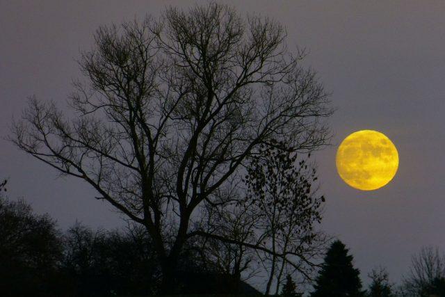 Měsíční úplněk