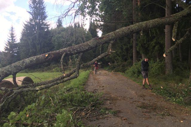 Následky bouře v Národním parku Šumava