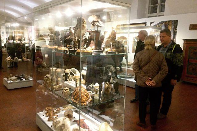 Na výstavě ke 120 letům otevření muzeum ukazuje i část přírodovědné sbírky
