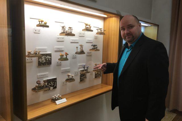 Podle ředitele teplického muzea Radka Spály je sbírka modelů hub v Krupce unikátní. Houby jsou jako živé a podobnou sbírku má už jen Národní muzeum