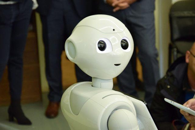 Robotka Ruby   foto: Inovační centrum Ústeckého kraje