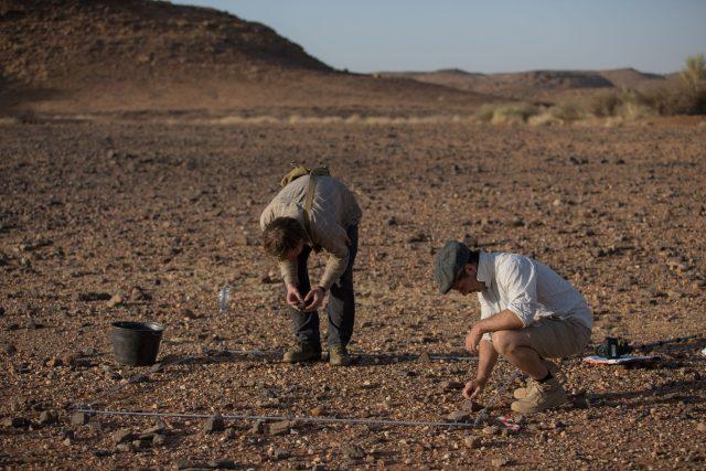 Povrchový průzkum dokázal,  že v Šakadúdu se nachází pravděpodobně největší pravěká lokalita v Súdánu. P. Burgert a J. Unger při totálních sběrech | foto: Petr Pokorný