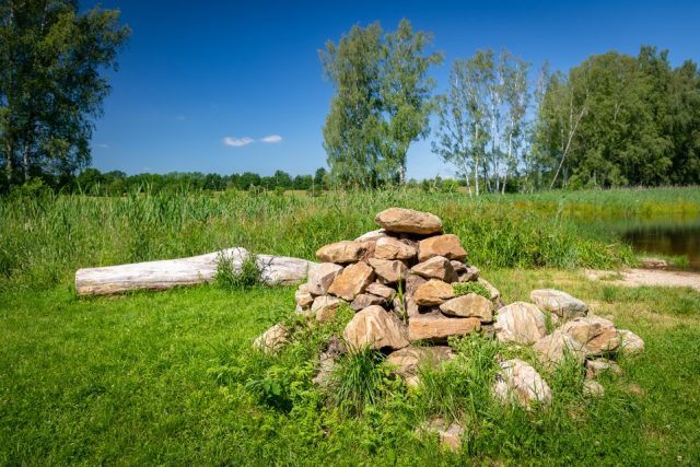 Rájem pro ještěrky může být třeba kupa kamení  (ilustrační foto) | foto: Vojta Herout