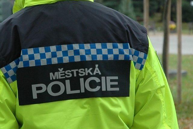 Strážník městské policie  (ilustr. obr.) | foto: Městská policie České Budějovice