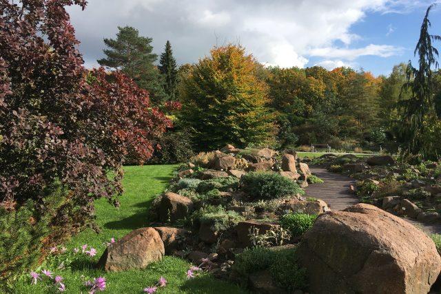 Kdo si chce v těchto podzimních dnech trochu zlepšit náladu, může zajít třeba do botanické zahrady v Teplicích