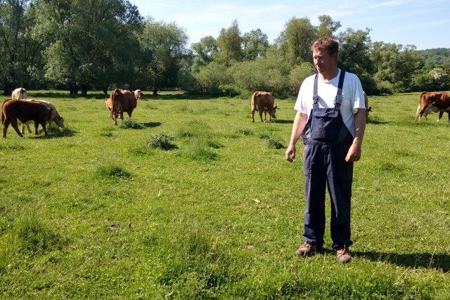 Pastviny u řeky Bíliny na Teplicku se zelenají   foto: Jana Vitásková,  Český rozhlas