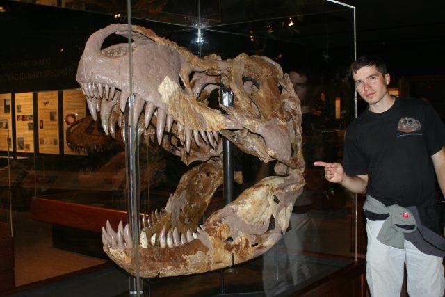 Mgr. Vladimír Socha u největší lebky Tyranosaura rexe | foto: Daniel Madzia