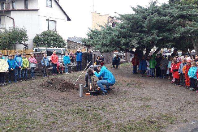 Společně s pamětní lípou uložili lidé ve Velkém Březně do země i vzkazy budoucím generacím
