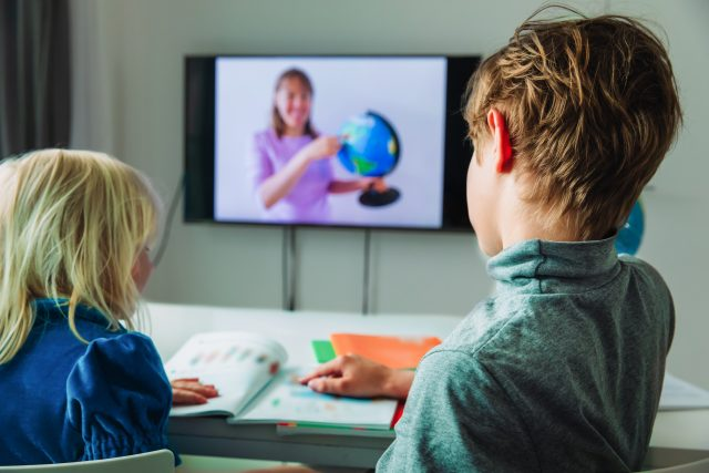 Online vyučování