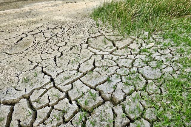 Suchá, rozpraskaná půda