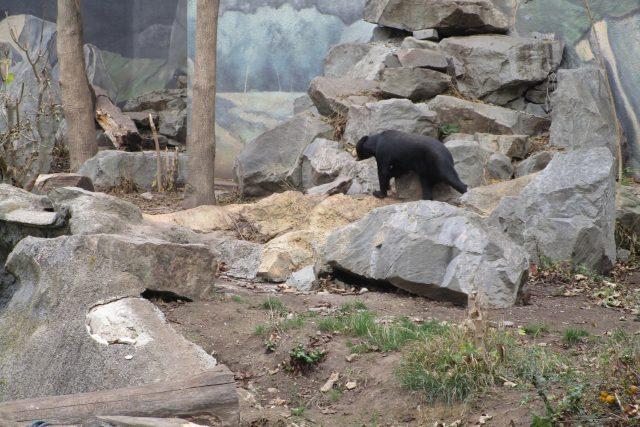 Zimní Zoo Ústí nad Labem
