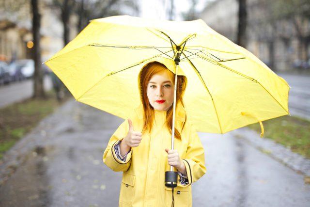 Volej: Písně do deště